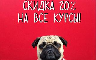 мопс_скидка