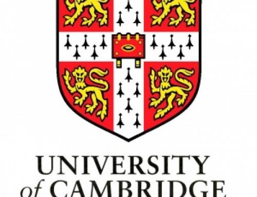 Кембриджские экзамены по английскому языку